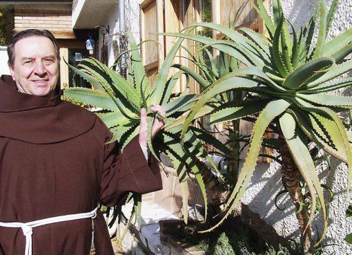 Fray Romano Zago - El Poder Curativo del Aloe Vera